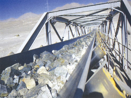 Cotton conveyor belt