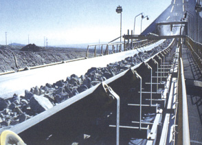 The ripstop layered conveyor belt